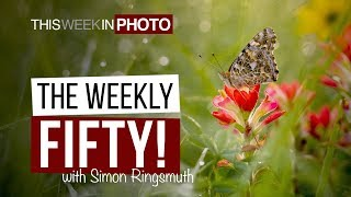 The Weekly Fifty! with Simon Ringsmuth