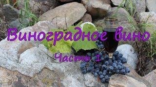 Виноградное вино. Часть 1.