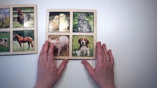 Картинки-половинки. Пазл. Домашние животные. Smile Decor (Смайл Декор)