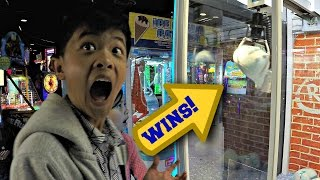 Claw Machine Japanese Prize Wins Arcade Skill Crane Games: Ms. Pac-Man, Despicable Me Fluffy +