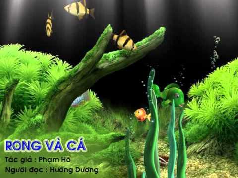 Rồng và cá  - Creat by Đinh Nhung