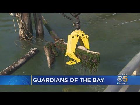 Army Corps Of Engineers Vessel Helps Keep Bay Debris Free
