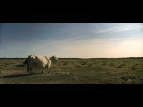 Alan Walker - Relax  (ft. Feal)