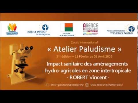 Impact sanitaire des aménagements hydro-agricoles en zone intertropicale - ROBERT Vincent