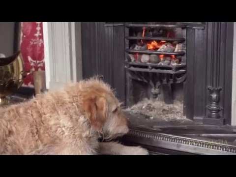 Antique fireplace restoration