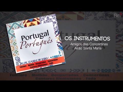 Amigos das Concertinas Airão Santa Maria - Os Instrumentos