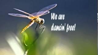 We are dancin