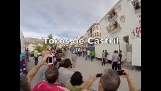 Toros Castril 2014