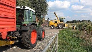 New Holland FX375 aan het mais hakselen met Fendt Farmer 307 en Favorit 600LS (2018) thumbnail