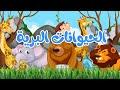 أنشودة الحيوانات البرية    أناشيد وأغاني أطفال باللغة العربية