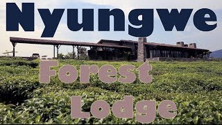Nyungwe Forest Lodge - Nyungwe, Rwanda