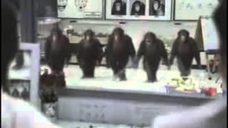 Harlem Shake [Kavkaz edition]