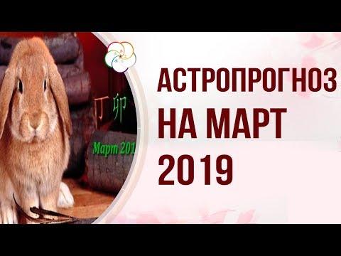 АСТРОПРОГНОЗ НА МАРТ 2019 ПО БАЦЗЫ и ФЭНШУЙ : Прогноз на Месяц  Огненного Кролика 2019 года!