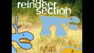Watch Reindeer Section Sting video