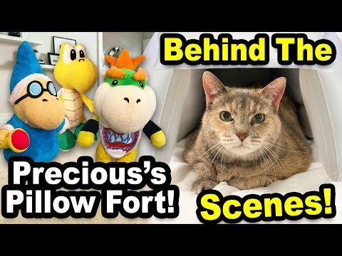 Precious's Pillow Fort - Behind The Scenes!!