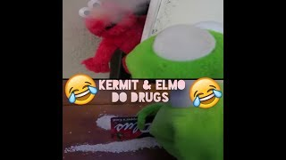 Download Kermit On Cocaine Videos Dcyoutube