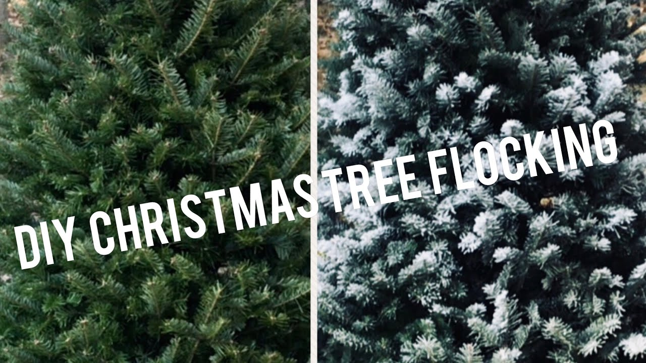 Christmas Tree Snow.How To Flock A Real Christmas Tree Diy Snowy Christmas Tree Snow Flock Tutorial