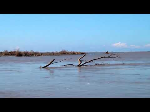 River Tour In Costa Rica, Birds Watching