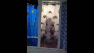 Скрытая камера: Душевые кабины в тренировочном зале(Хохот в душевой кабине в одном из треноровочных залов Махачкалы. http://bihi.blog.com http://twitter.com/2arsenia., 2012-01-11T20:16:26.000Z)
