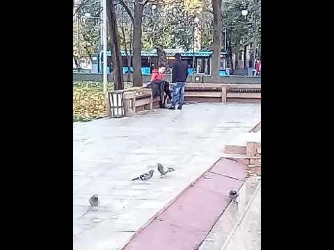 Кыргыз МАС азер