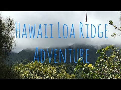 Hawaii Loa Ridge Adventure-Geologic Site Investigation-GG 103 KCC July 2017