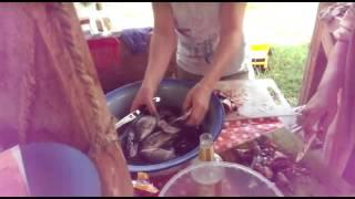 Рыбный фарш, готовим на соковыжималке