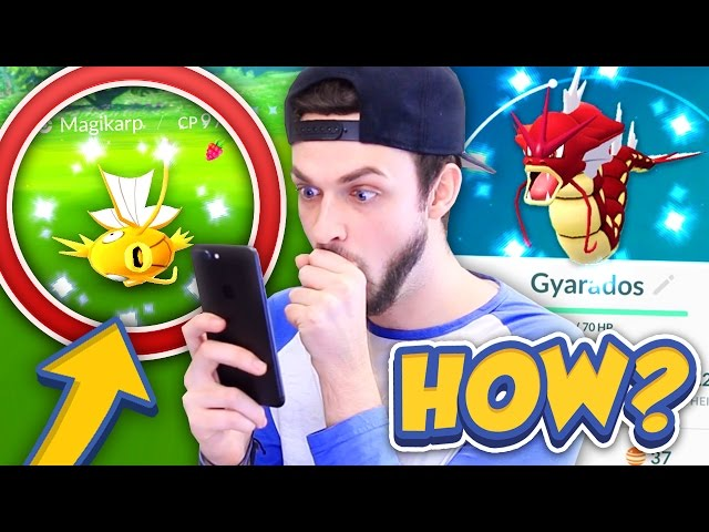 ✨HOW to get SHINY MAGIKARP (+SHINY GYRADOS)!✨ - POKEMON GO! (SUPER RARE SHINIES)