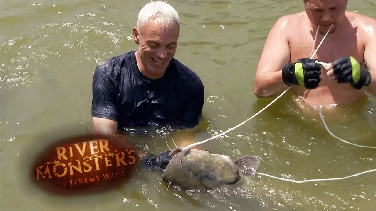 Using Bare Hands To Catch A Catfish   CATFISH   River Monsters