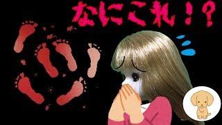 赤い足跡 【怖い話】 リカちゃん ハウスに 心霊現象 廃墟に 連れていかれる リカちゃん アニメ 学校 人形 おもちゃ キッズ トイ チャンネル thumbnail
