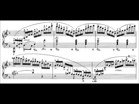 Chopin: Etudes Op.10 and Op.25 (Fialkowska)