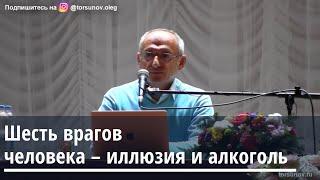 Торсунов О Г Шесть врагов человека иллюзия и алкоголь