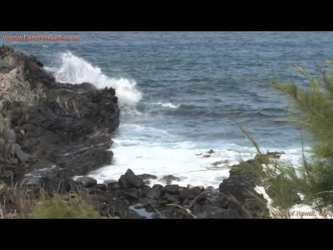 Hawaii, USA 10 Collage Video - youtube.com/tanvideo11