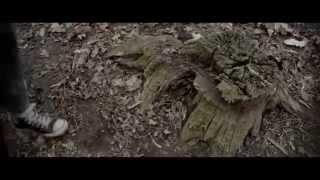The Funeral - Band of Horses (tradução interpretativa)