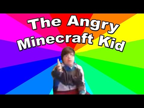 What is get the F outta my room I'm playing Minecraft? Meme explanation and analysis