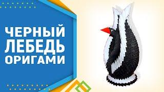 Лебедь в черном. Как сделать лебедя из модулей оригами. Модульное оригами для начинающих.
