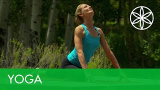 Colleen Saidman Yoga for Weight Loss - Strengthen and Energize | Yoga | Gaiam