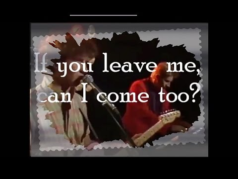 If you leave me can I come too ? Mental as anything  LYRICS