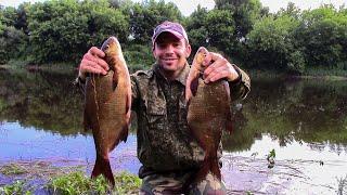 ЛЕЩ, ГОЛАВЛЬ на Днепре! Крутая рыбалка на фидер с ночевкой под открытым небом!
