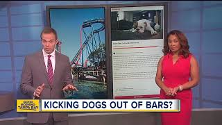 Florida health officials cracking down on dogs inside breweries