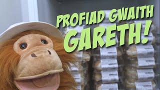 Y Becws –Profiad Gwaith Gareth!