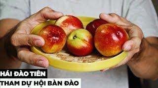 Lần đầu ăn thử Đào Sapa   Hương Vị Miền Tây