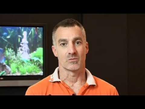 David Jones Electricians - Overview