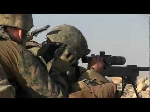 Scout Sniper Platoon Surveillance Target Acquisition Team