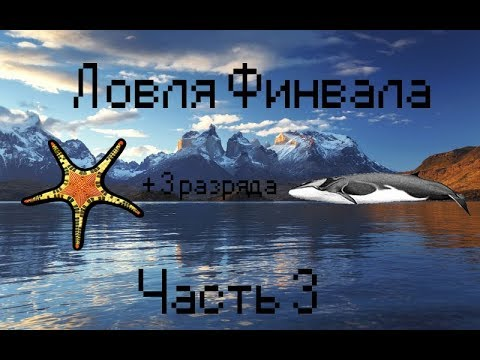 Видео Игры симуляторы рыбалки онлайн