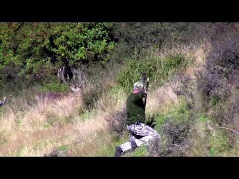 Brad's hunt at Gary Herbert's