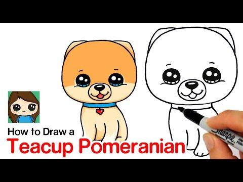 How to Draw a Pomeranian   Boo World's Cutest Dog