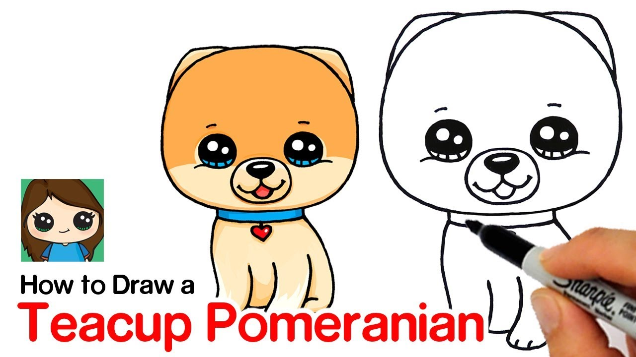 How To Draw A Pomeranian Boo World S Cutest Dog Youtube