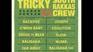 Tricky Meets Sotuh Rakkas Crew - Numb