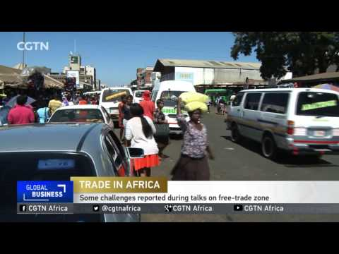 Interview on Continental Free Trade Area with AU commissioner