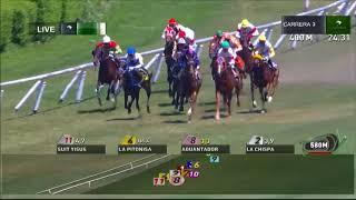 Vidéo de la course PMU PREMIO DOMAINE